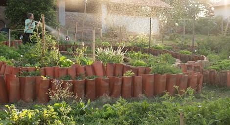 Pousada em Vinhedo com Horta Orgânica